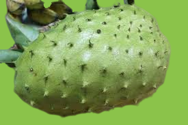 how to eat soursop fruit
